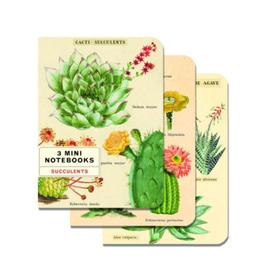 Mini Succulents Notebooks Set of 3