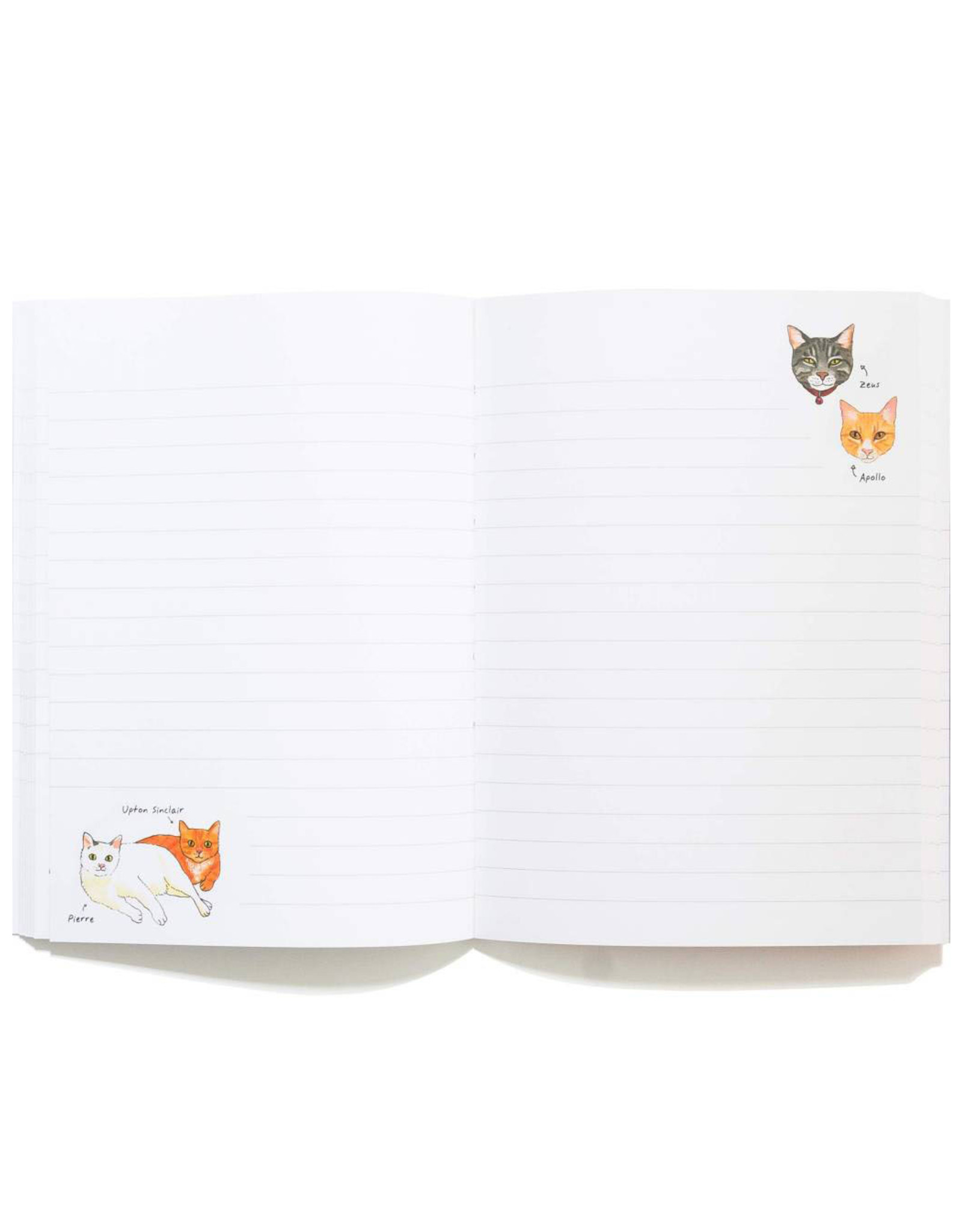 Bookstore Cats Journal