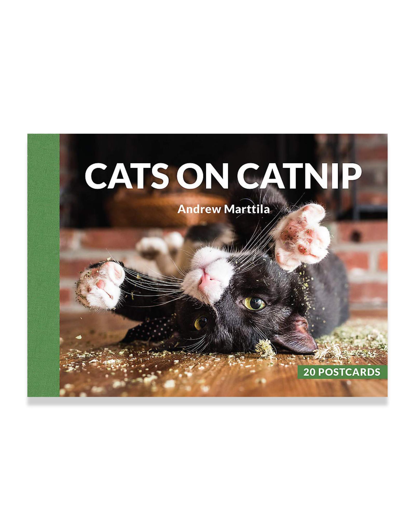 Cats on Catnip Postcard Set