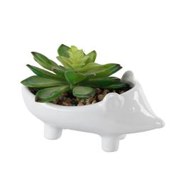 Hedgehog Ceramic Succulent Planter - Standing