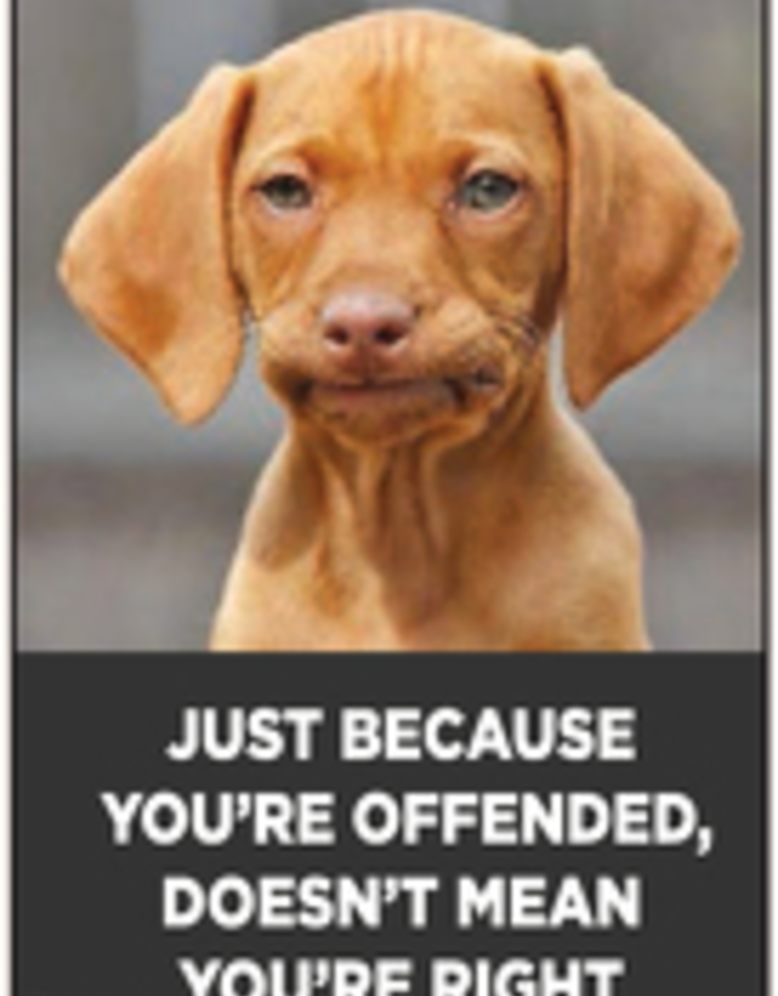 Just Because You're Offended... Magnet