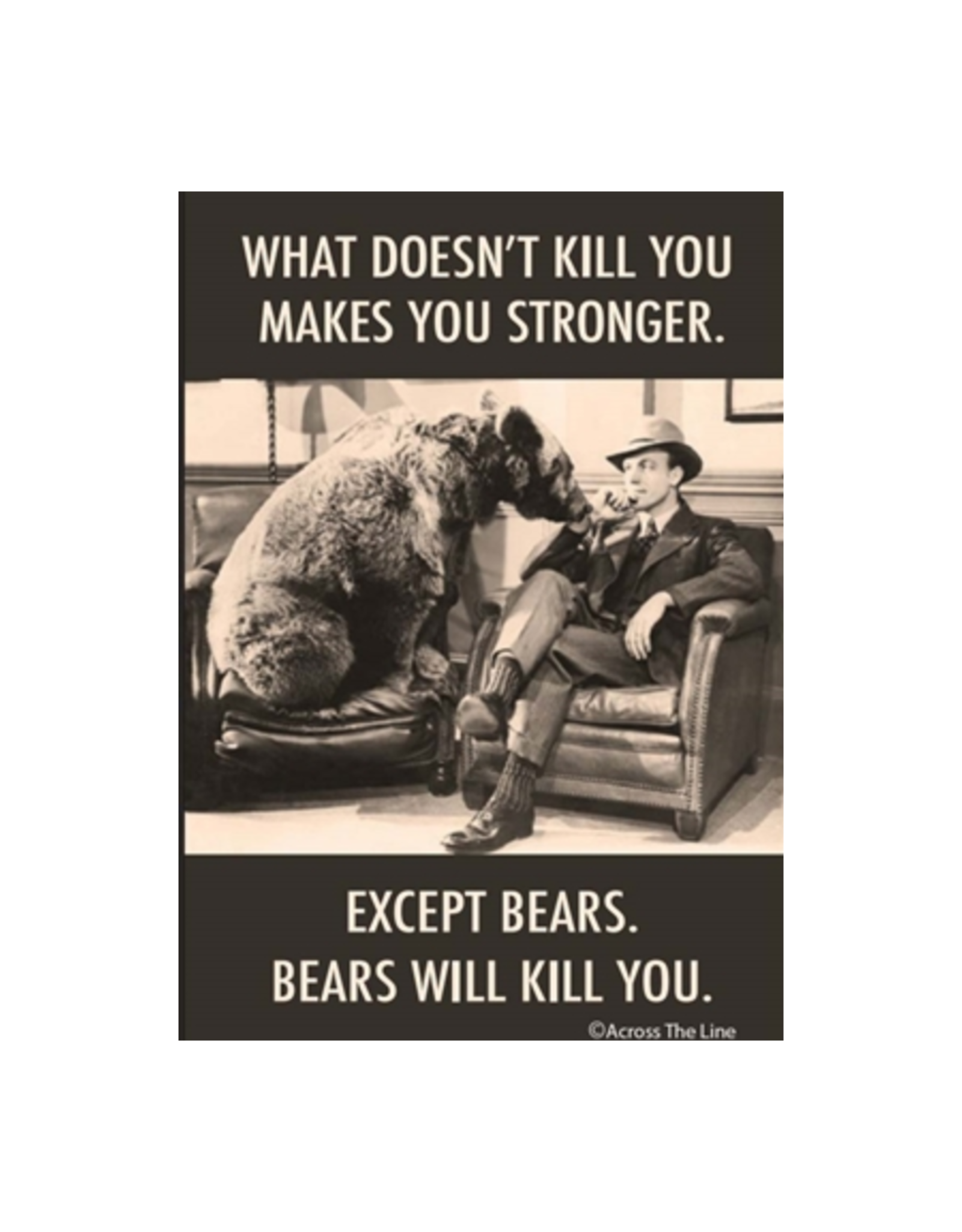 What Doesn't Kill You Makes You Stronger. Except Bears Magnet