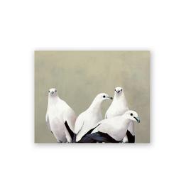 Wings on Wood - Fruit Doves