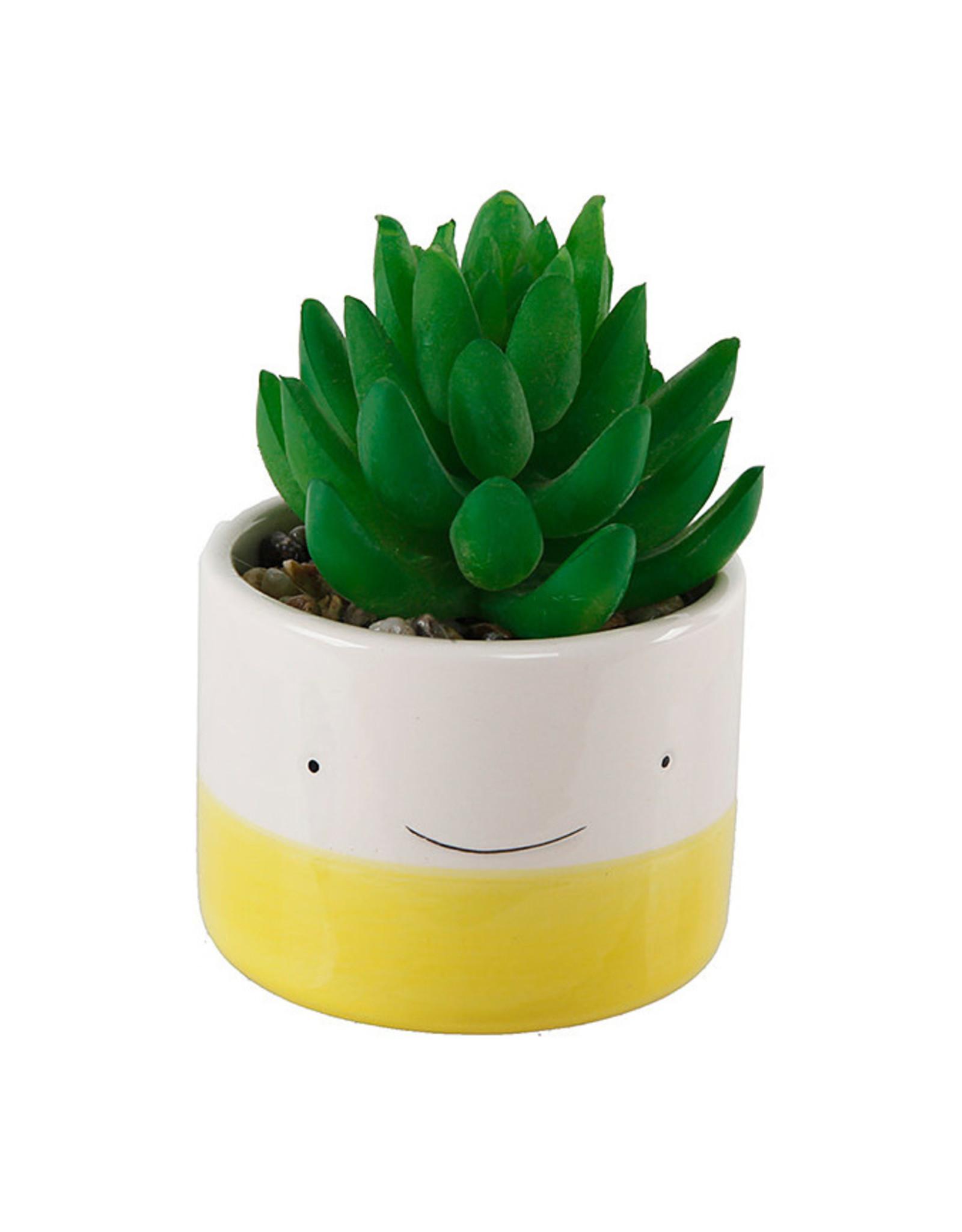 Smiley Face Succulent Planter - Yellow
