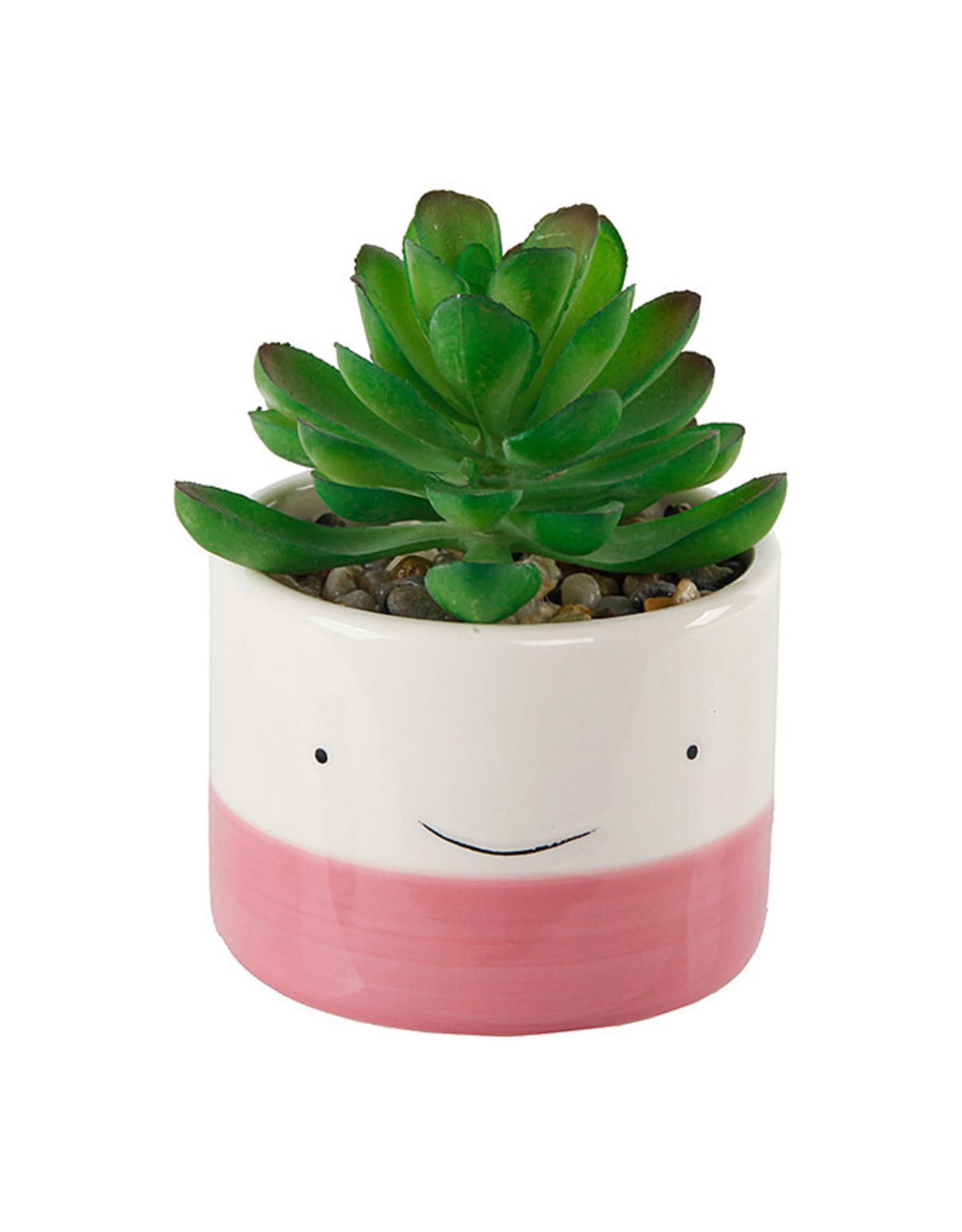 Smiley Face Succulent Planter - Pink