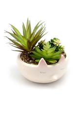 Succulent Trio in Hedgehog Ceramic Planter