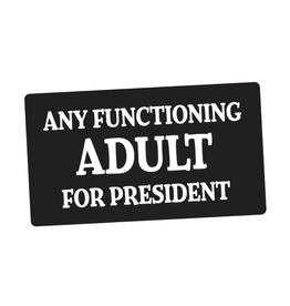 Any Functioning Adult For President Bumper Sticker