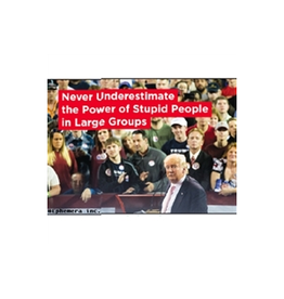 Never Underestimate The Power Of Stupid People Magnet