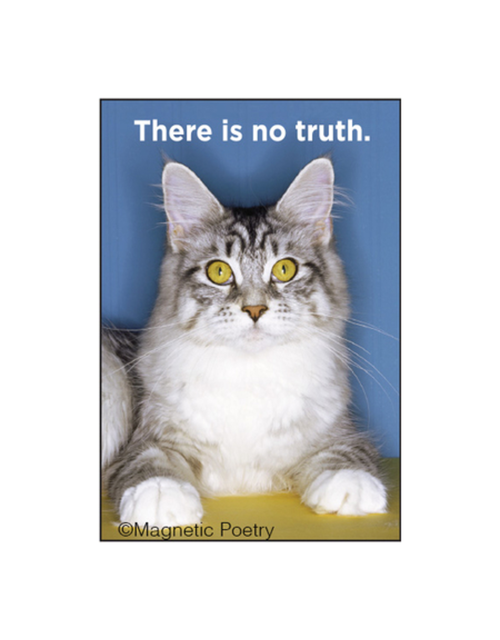There is No Truth Cat Magnet