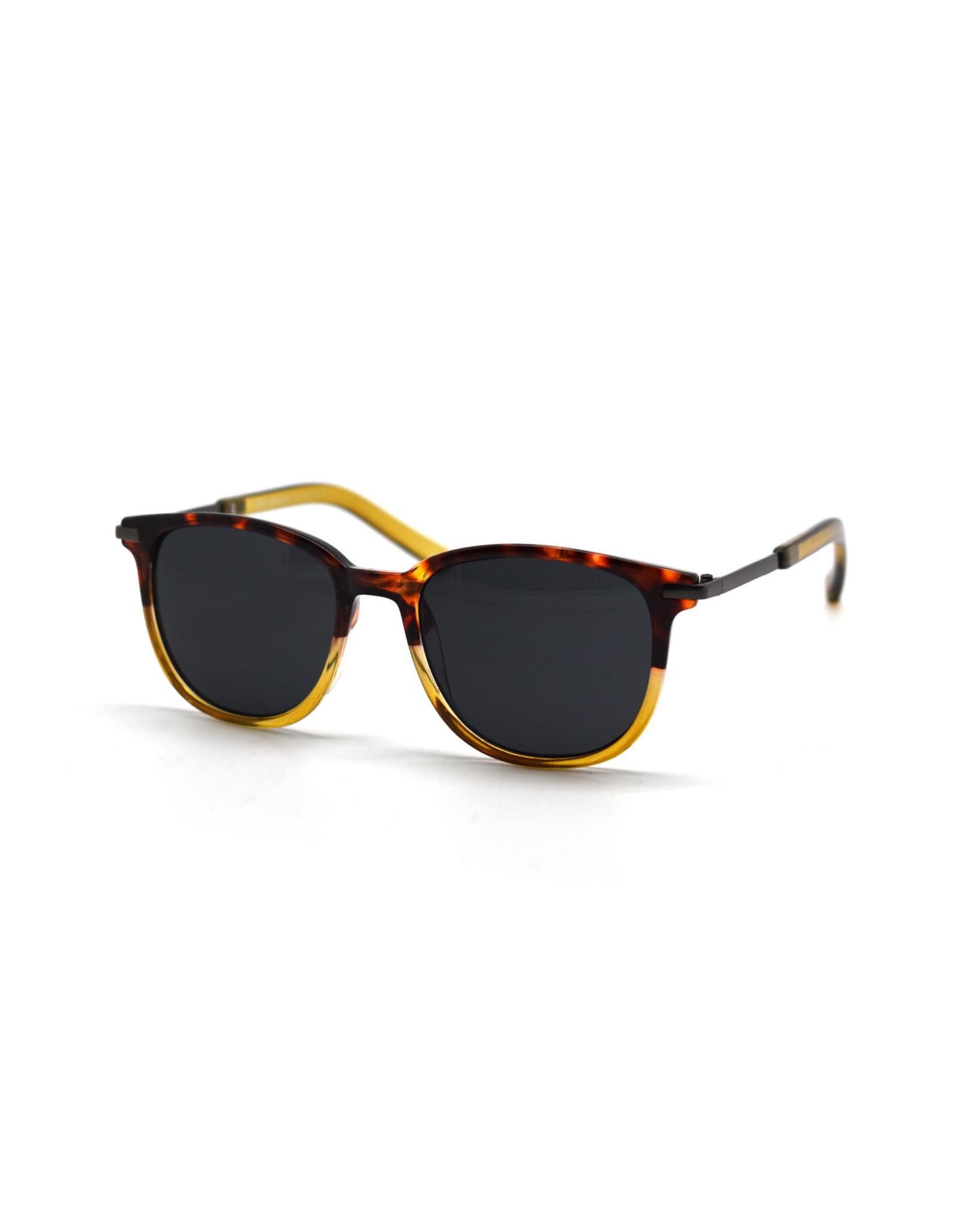 Acoustic Sunglasses