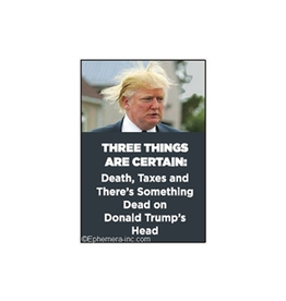 Three Things are Certain... Trump Magnet