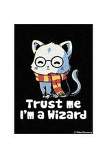 Trust Me I'm a Wizard Magnet