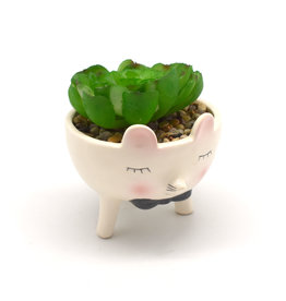Succulent in Little Mouse in a Bow Tie Ceramic Planter
