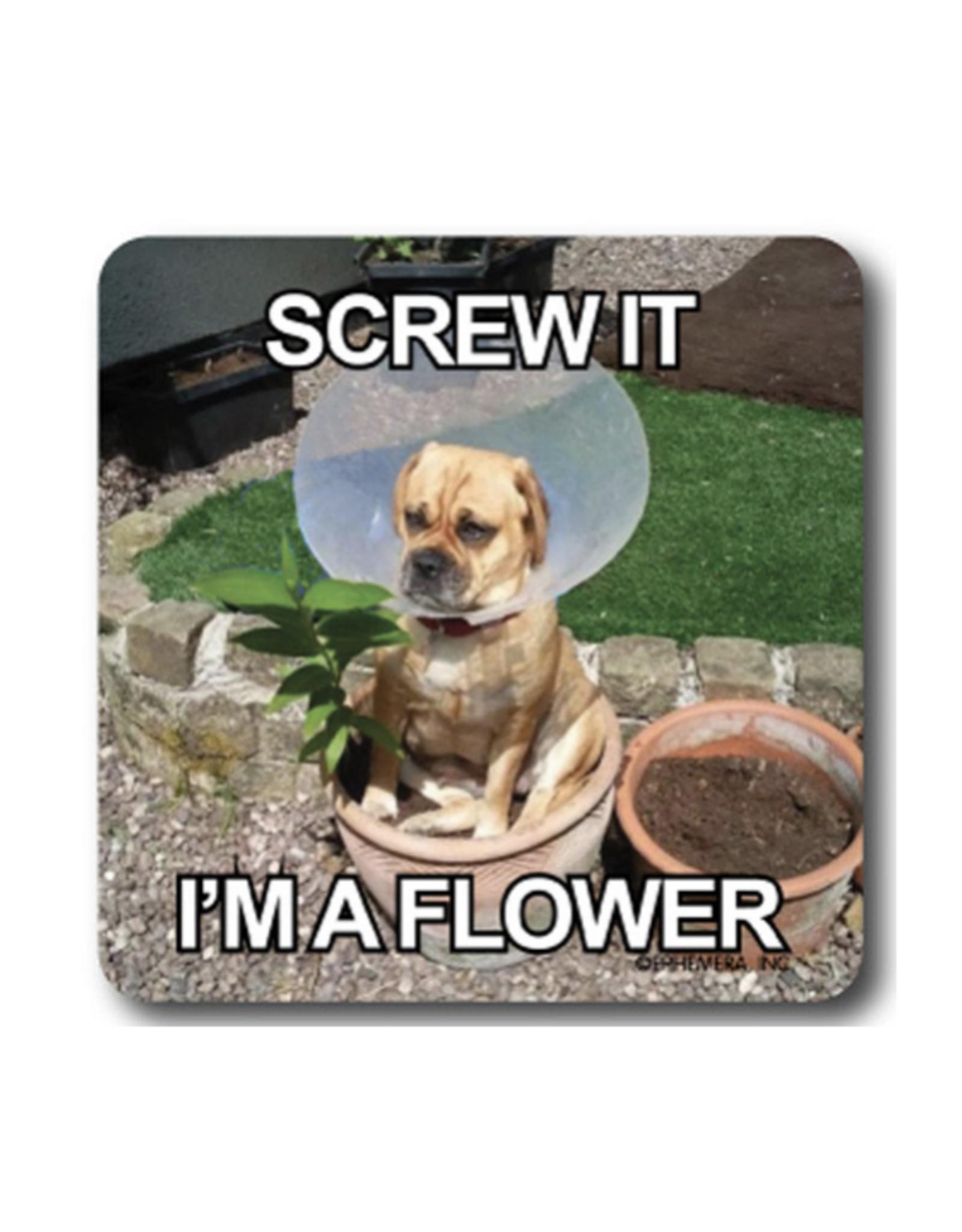 Screw It, I'm a Flower Coaster