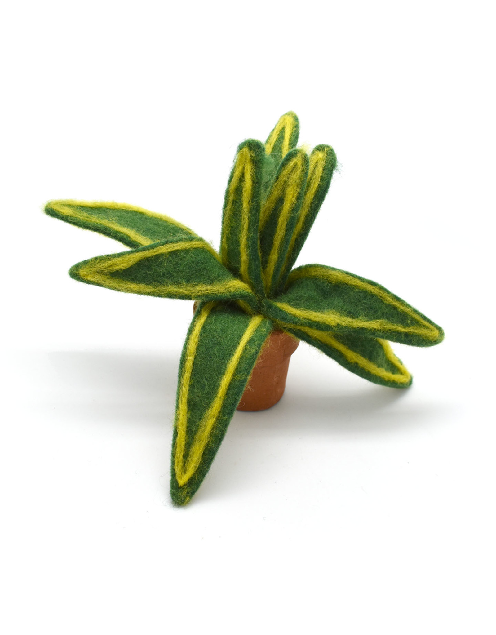 Small Felted Snake Plant