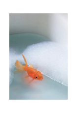 Koi Bath Light