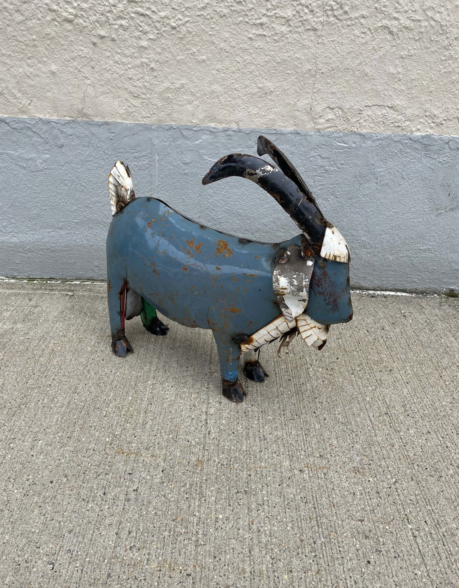 Longhorn Goat - Small (CURBSIDE PICKUP ONLY0