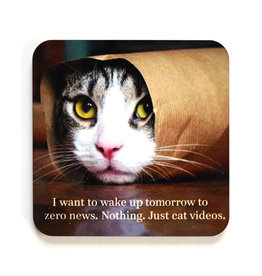 I Want to Wake Up Tomorrow to Cat Videos Coaster (cork)