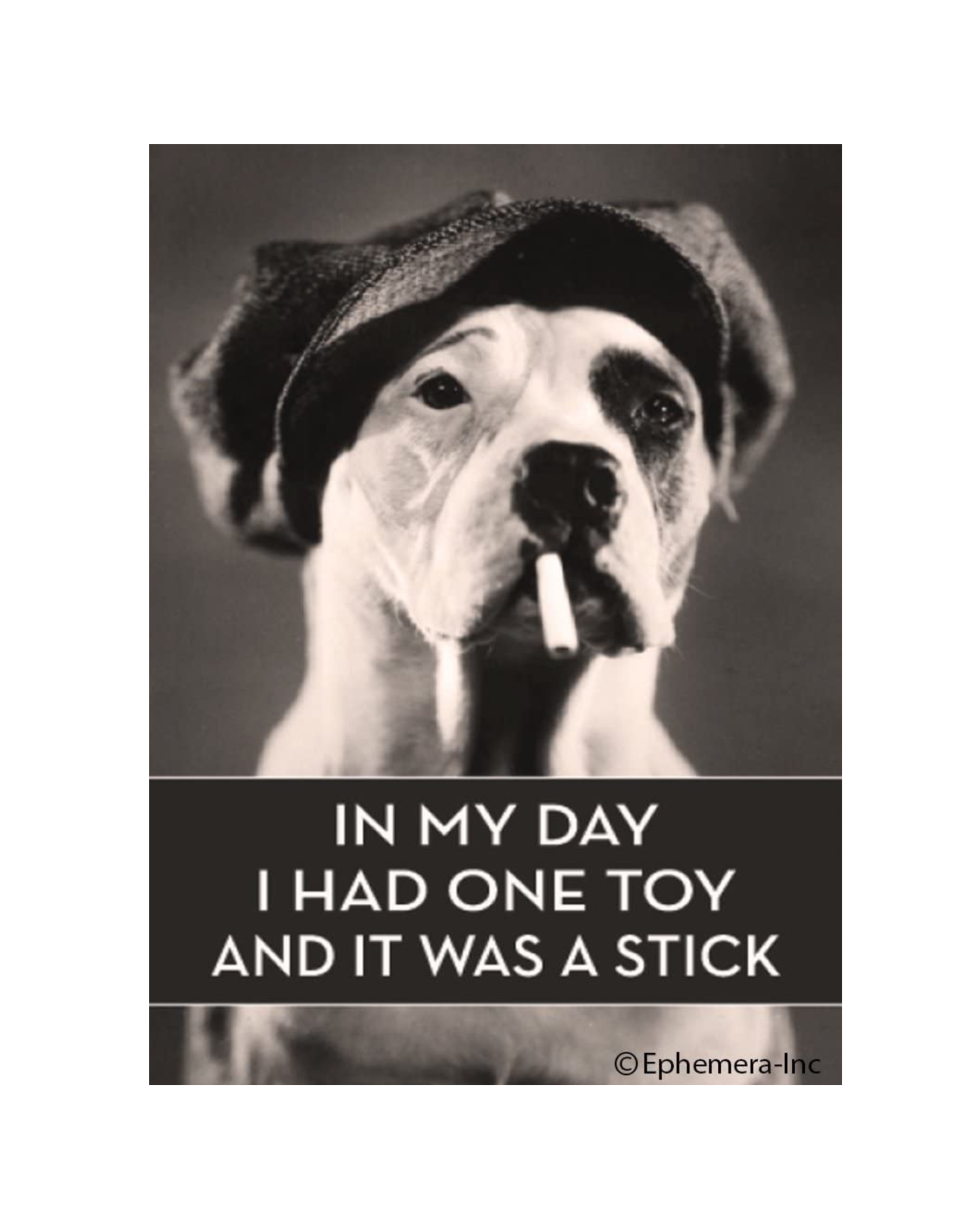 One Toy and it was a Stick Magnet