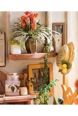 DIY Miniature House Kit : Miller's Garden