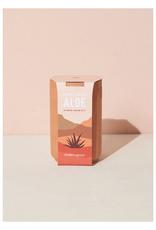 Terra Cotta Kit - Aloe