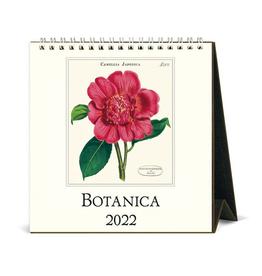 2022 Desk Calendar: Botanica