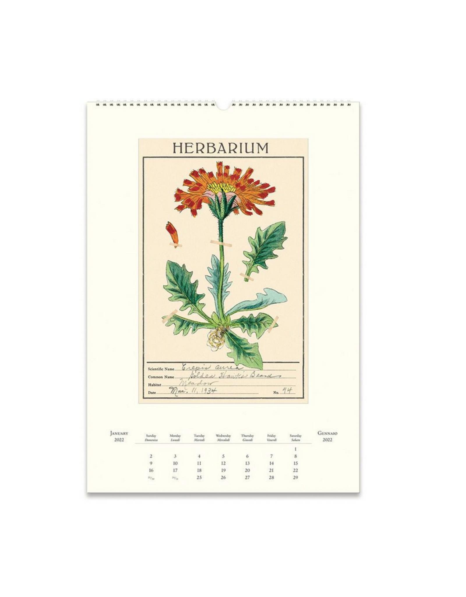 2022 Wall Calendar : Herbarium