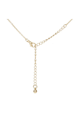 Amber Tortoise Hanging Bar Necklace