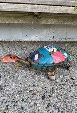 Family Turtle - Large