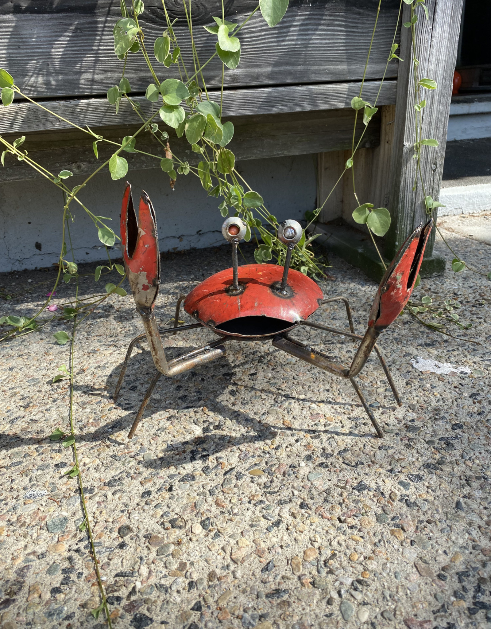 Standing Crab - Claws Up (CURBSIDE PICKUP ONLY)LY