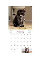 Cats on Catnip 2022 Wall Calendar