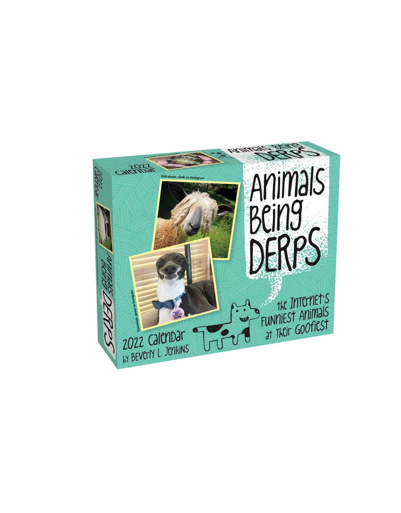 Animals Being Derps 2022 Pad Calendar