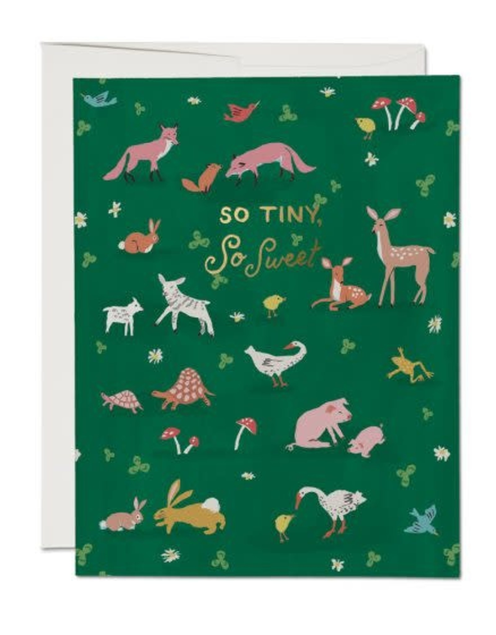 So Tiny, So Sweet Baby Animals Greeting Card