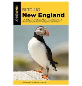 Birding New England