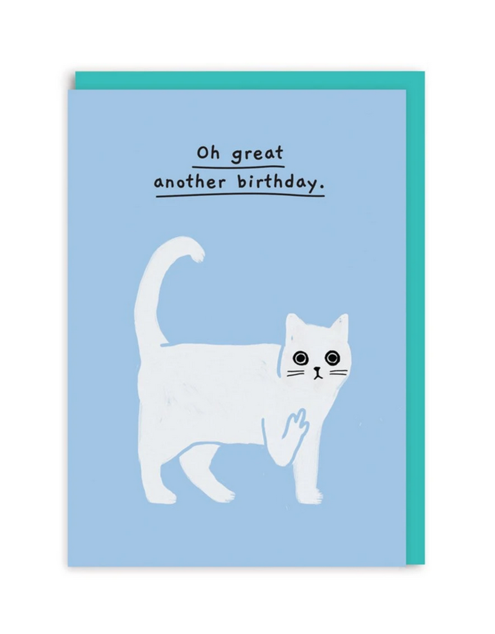 Another Birthday Cat Middle Finger Greeting Card