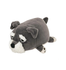 Marshmallow Schnauzer Dog