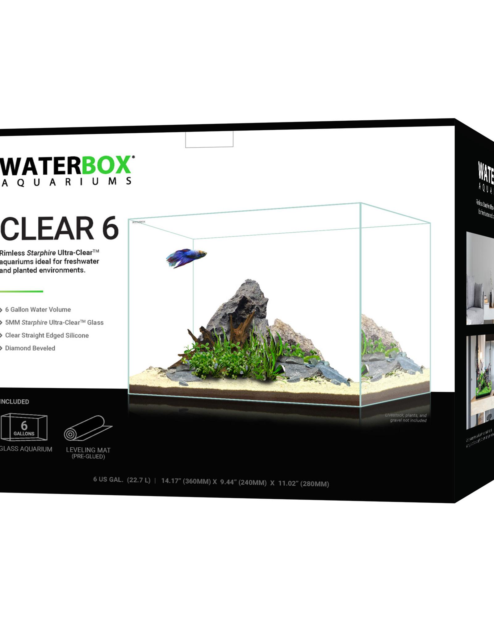 Waterbox Aquariums Waterbox Aquariums Clear 6