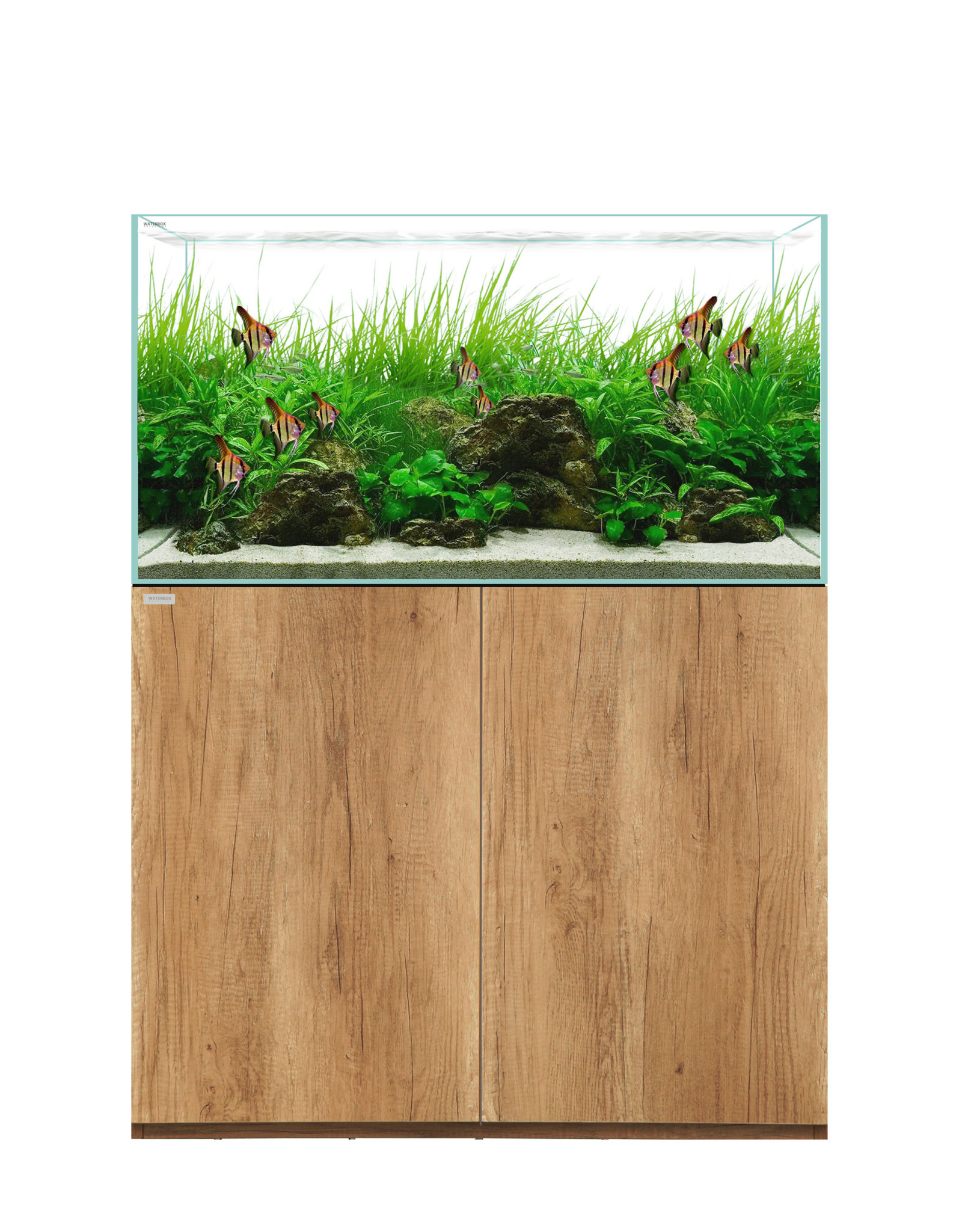Waterbox Aquariums Waterbox Clear 3618