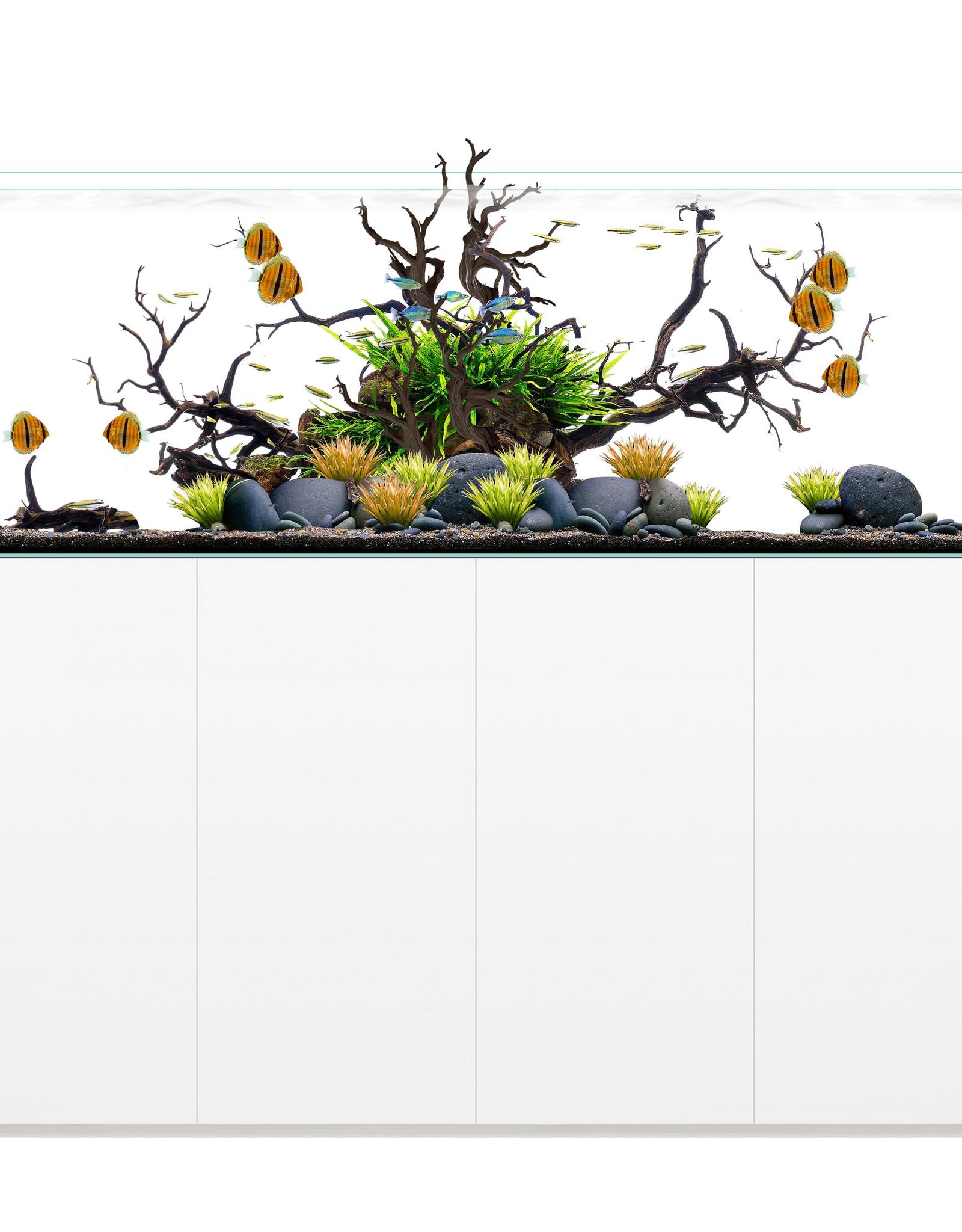 Waterbox Aquariums Waterbox Clear Pro 7225