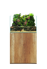 Waterbox Aquariums Terra 2418
