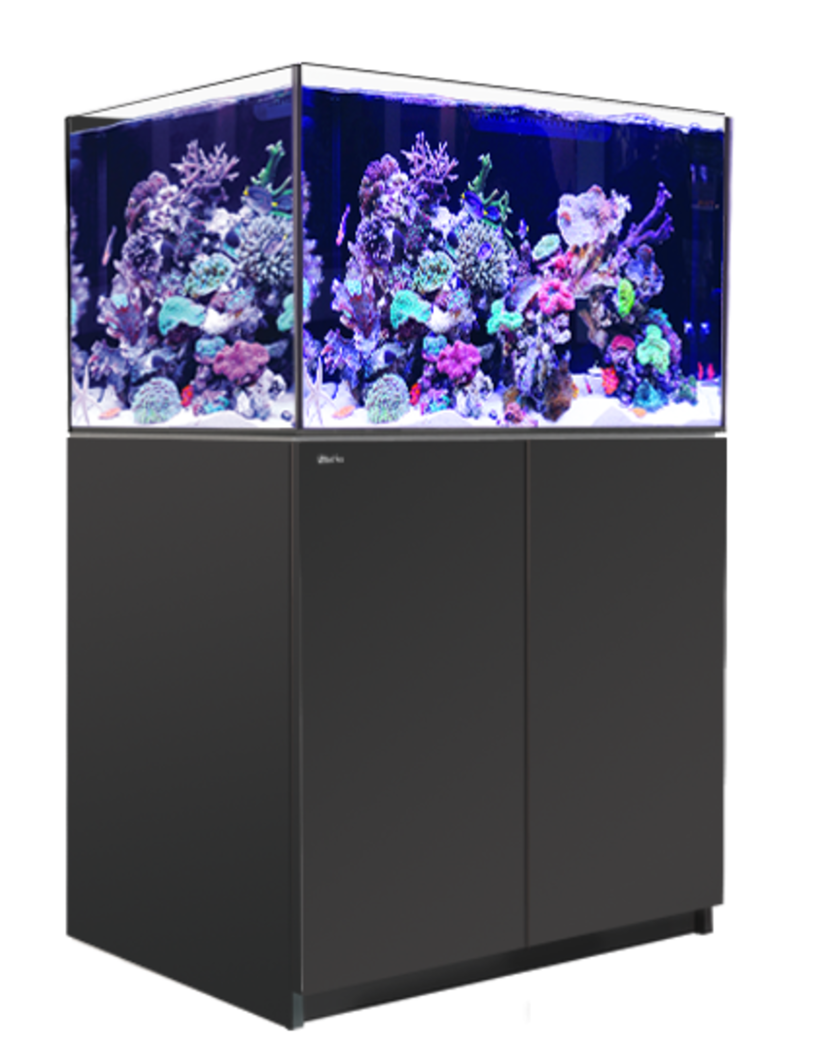 Reefer XL300 Black (80G)