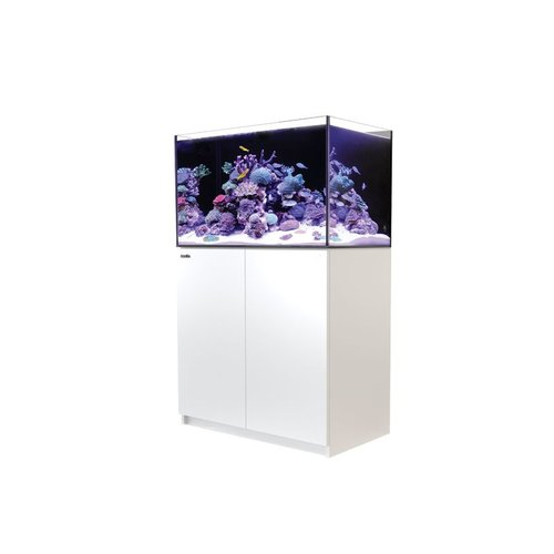 RED SEA Reefer 250 (65g)