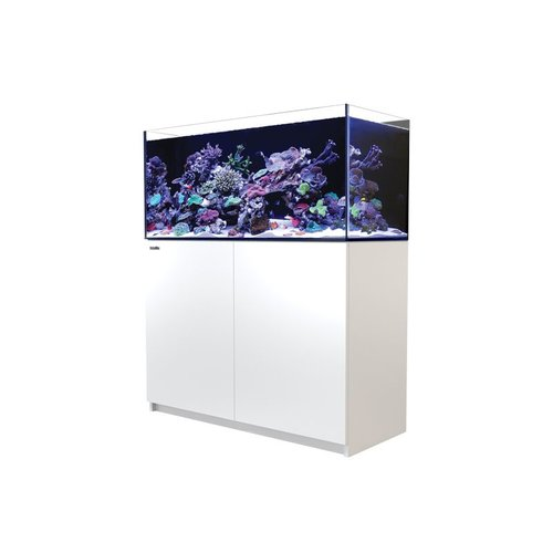 RED SEA Reefer 350 (91g)