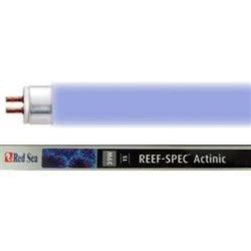 """RED SEA 54w Reef Spec T5 Bulb - 48"""""""