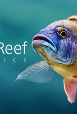 RIFT 2 REEF AQUATICS R2R - Gift Cards