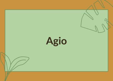 AGIO ACCESSORIES
