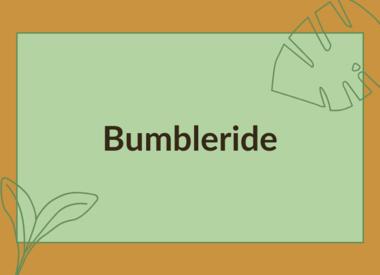 BUMBLERIDE