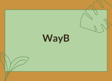 WAYB ACCESSORIES