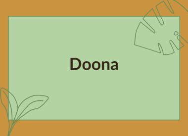 DOONA ACCESSORIES
