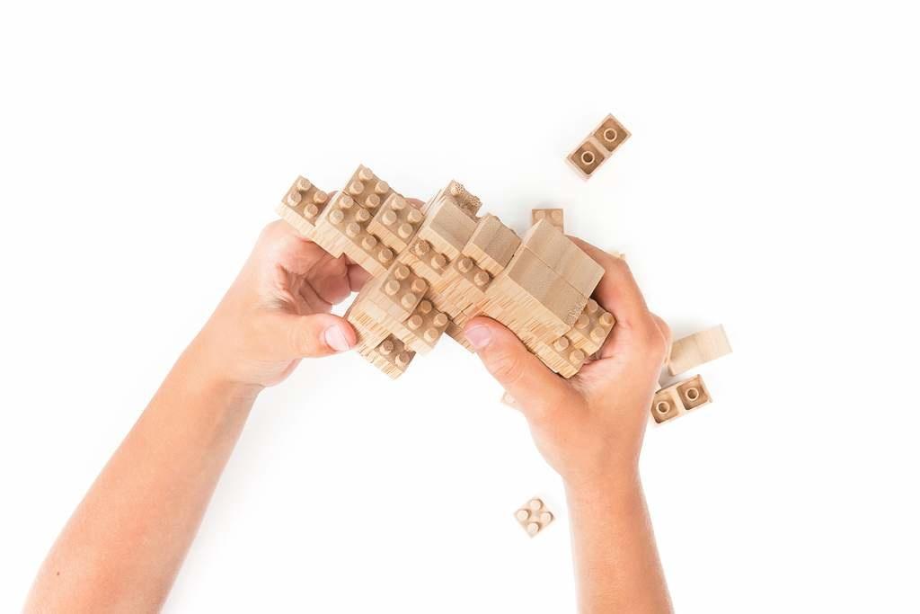 Eco-Bricks Eco-Bricks - 24 Piece Set